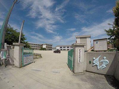 トレステーラShinVI 小学校中津市立北部小学校まで1259m