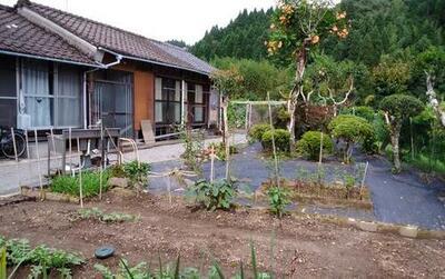 古い家が残っており、家の前が♪菜園畑となって日当たりがいいです