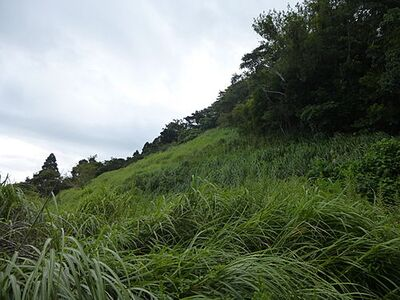 高山田 土地