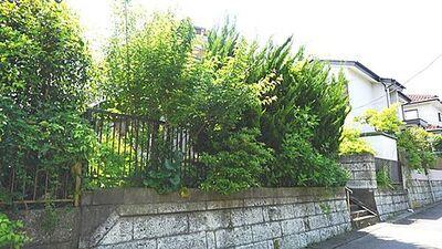 柏市東中新宿3丁目(土地)01 区画1 現地土地写真です。