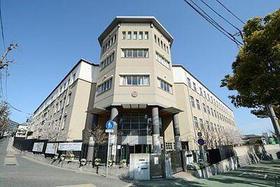 神戸市灘区土山町戸建て 小学校神戸市立高羽小学校まで1295m