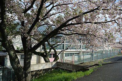 【小学校】八王子市立横山第二小学校まで517m