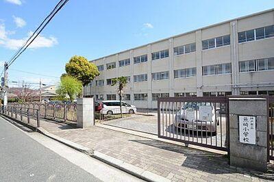 アコード魚崎 小学校神戸市立魚崎小学校まで408m