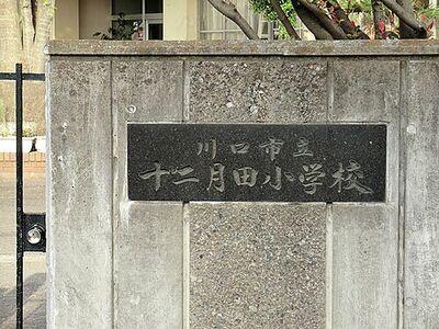 ヴァンフォートメイツ川口 川口市立十二月田小学校(200m)