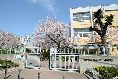 岡本エクセル 【小学校】神戸市立本山第一小学校まで882m