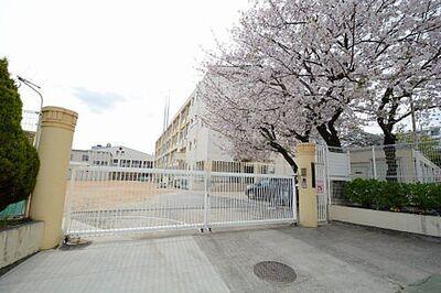 メゾン・ド・エクラン 小学校神戸市西灘小学校まで808m